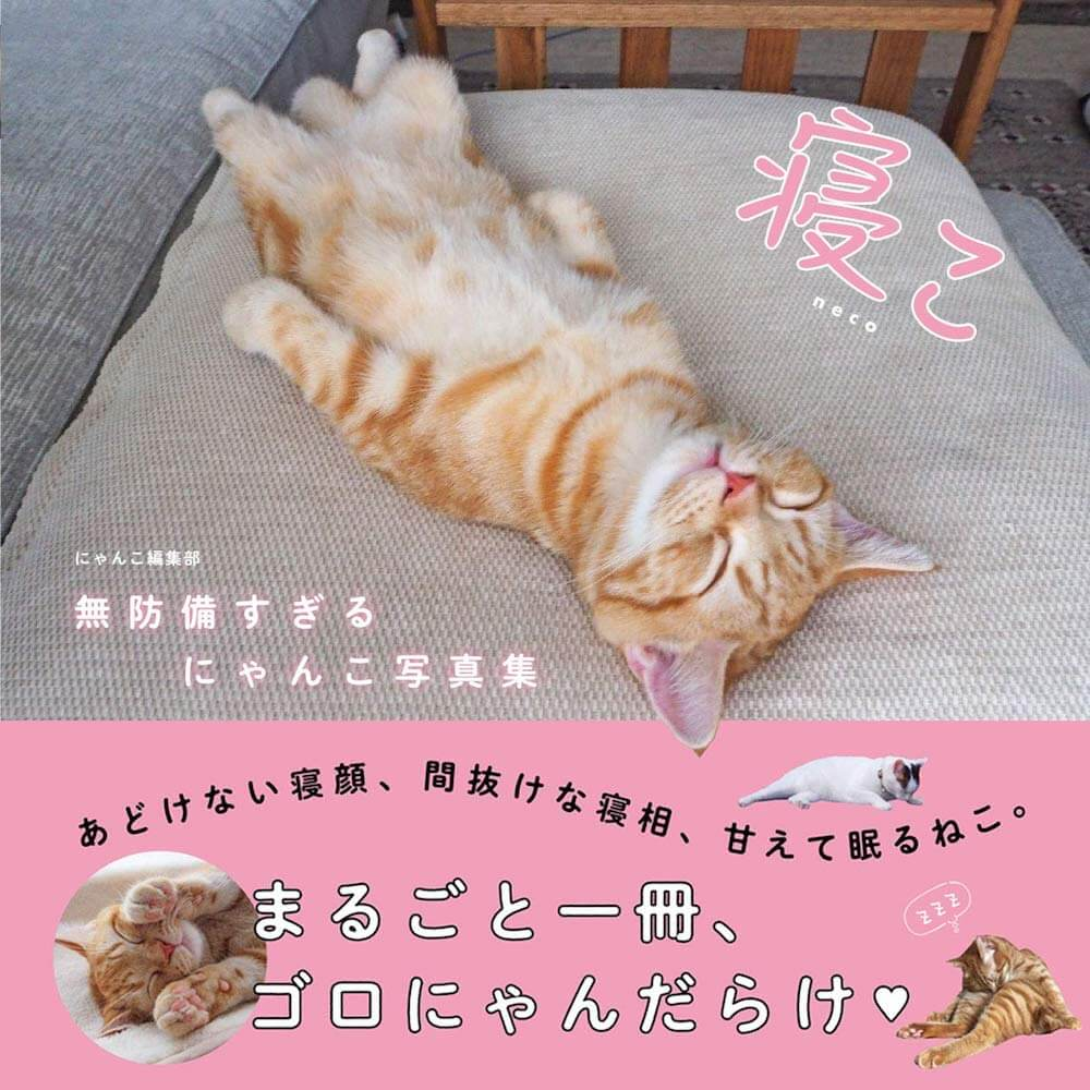 書籍「寝こ 無防備すぎるにゃんこ写真集」の表紙