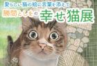 利き手を失いながらも復活したマンガ家、勝間としを氏による猫の絵画展が11月2日より開催