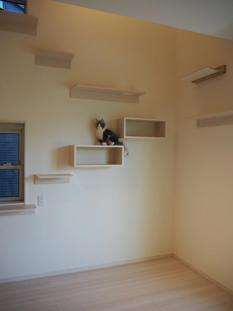 壁には飾りのボックスステップ付き by 猫共生型分譲住宅の第2弾「ichineko 芝塚原」