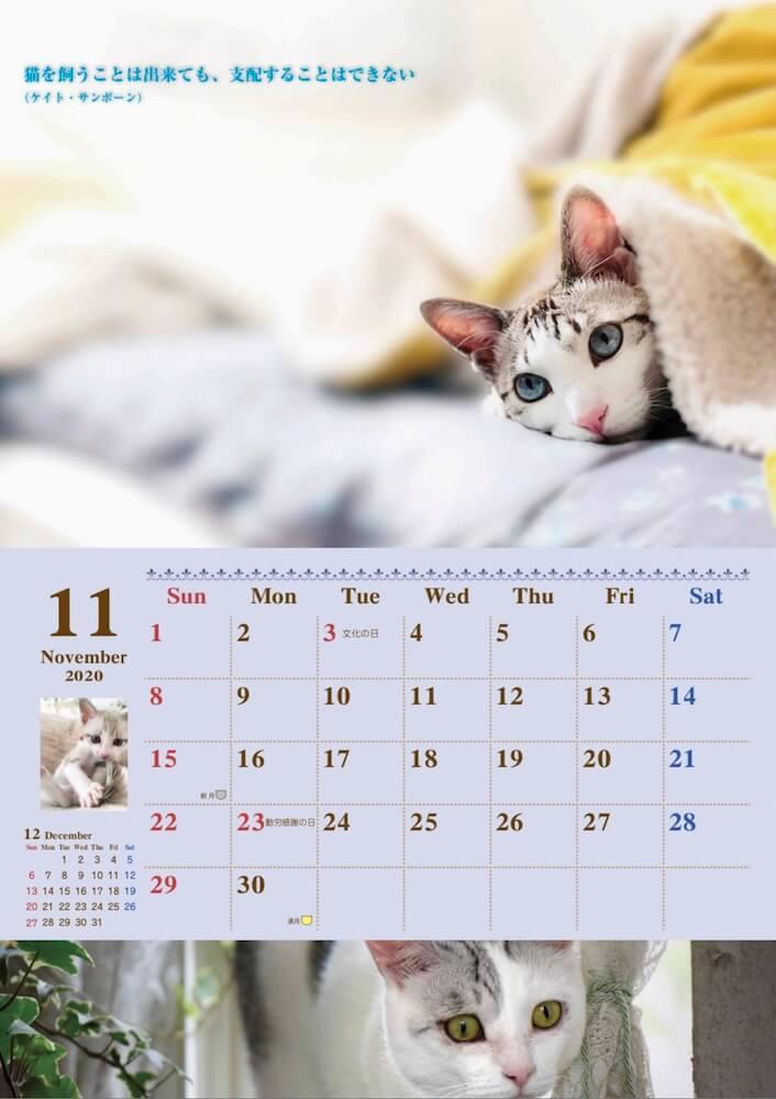 「福岡ねこともの会」から、2020年度のチャリティー猫カレンダーのサンプルページ