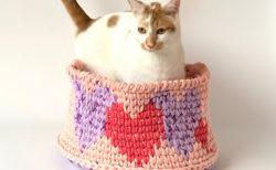猫用アイテムやかわいい雑貨が集まる「にゃんこまつり」横浜の住宅展示場で11/17に開催