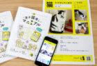 愛猫が失踪したら何をすべき?ペット探偵が監修した迷子猫の探し方マニュアルが無料で公開