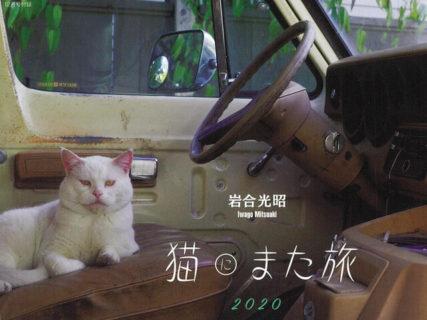 今年も岩合さんの新作ネコ写真がアサヒカメラの表紙をジャック!恒例のネコカレンダーもあるニャ
