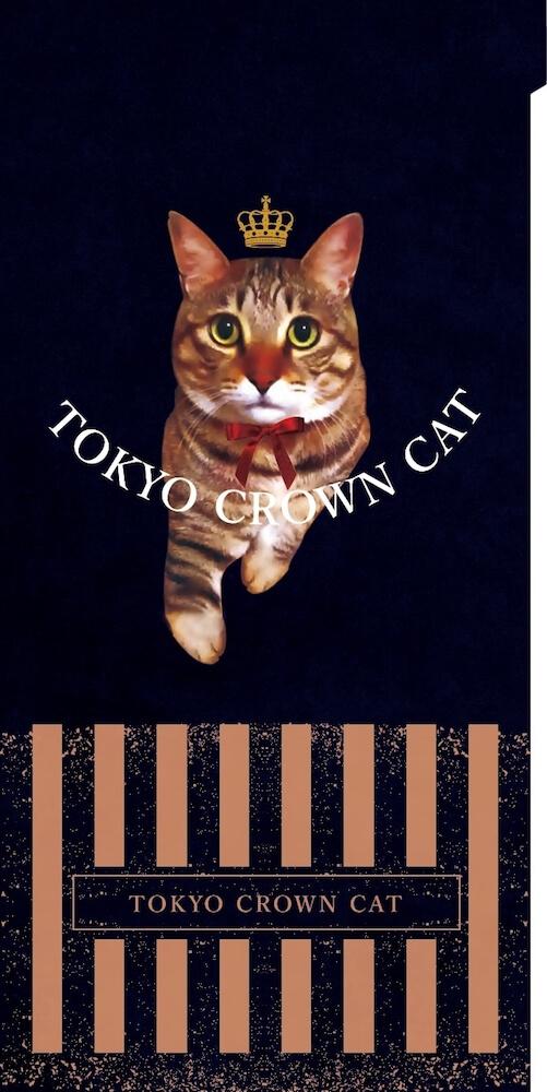 TOKYO CROWN CATのノベルティグッズ、キジトラ猫「Mr.TORAKICHI」のチケットフォルダー(表面イメージ)