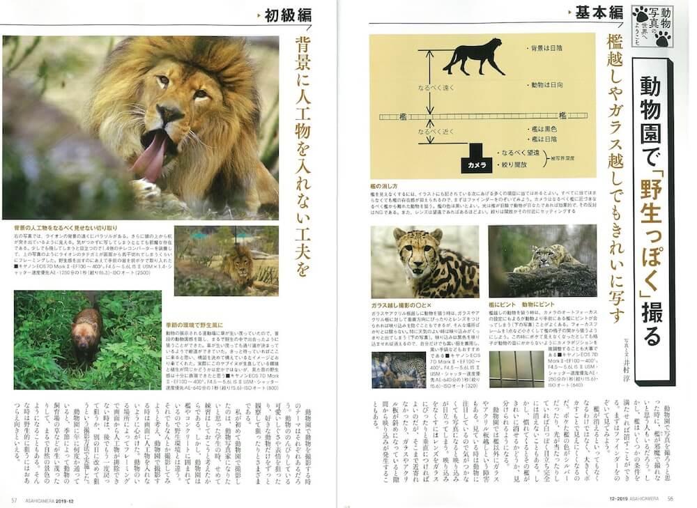 動物園で野生っぽく撮影するコツ by アサヒカメラ2019年12月号