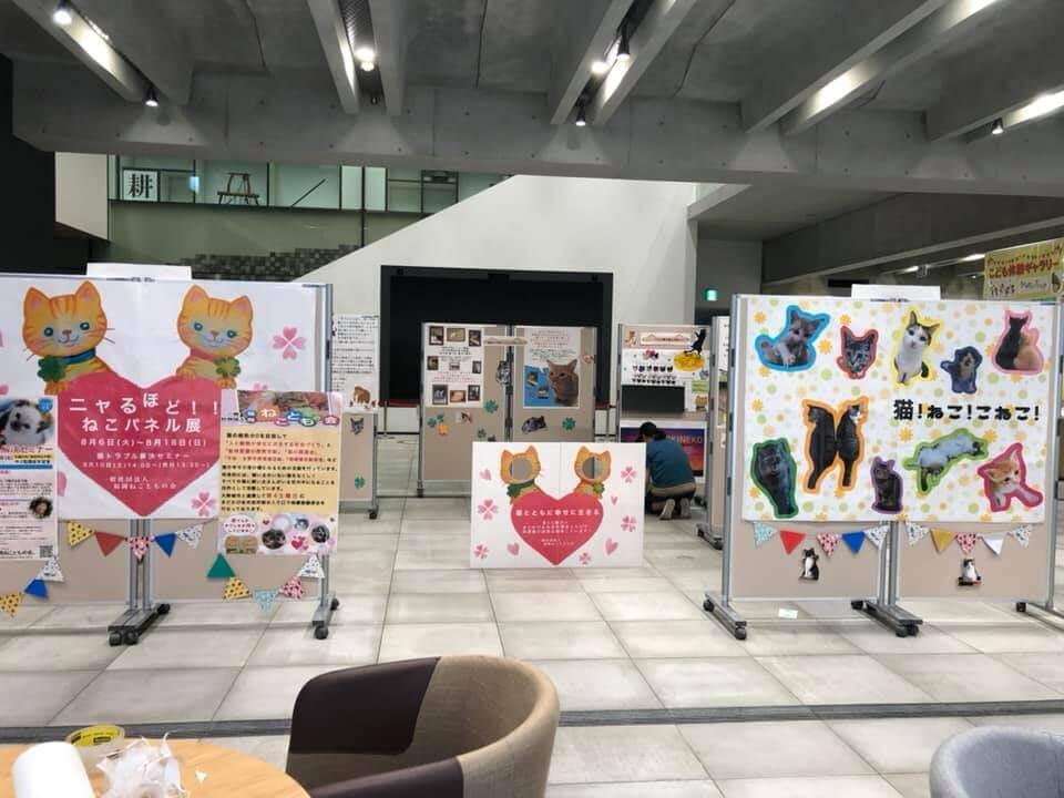 動物愛護パネル展の展示風景 by 福岡ねこともの会