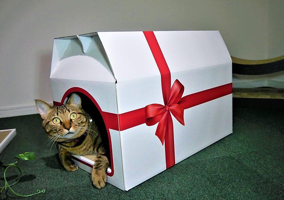 爪とぎ一体型の猫ハウス「つめとぎプレゼントBOX」から身を乗り出す猫