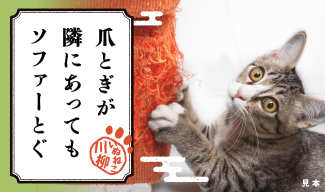 猫あるあるな川柳 作品例イメージ1