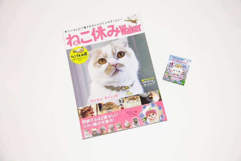ねこ休みWalker/1,300円