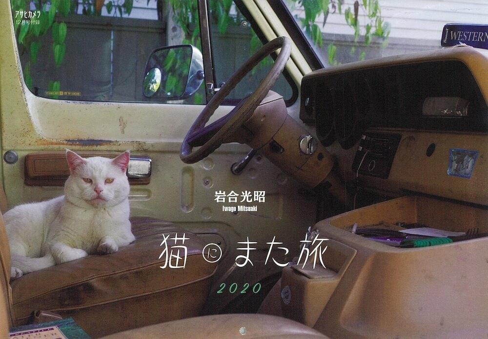 アサヒカメラ2019年12月号の特別付録「ネコカレンダー2020」の表紙 by 岩合光昭