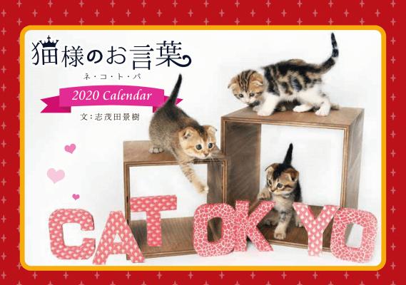 志茂田景樹さんの子猫カレンダー「猫様のお言葉 ネ・コ・ト・バ2020」の表紙