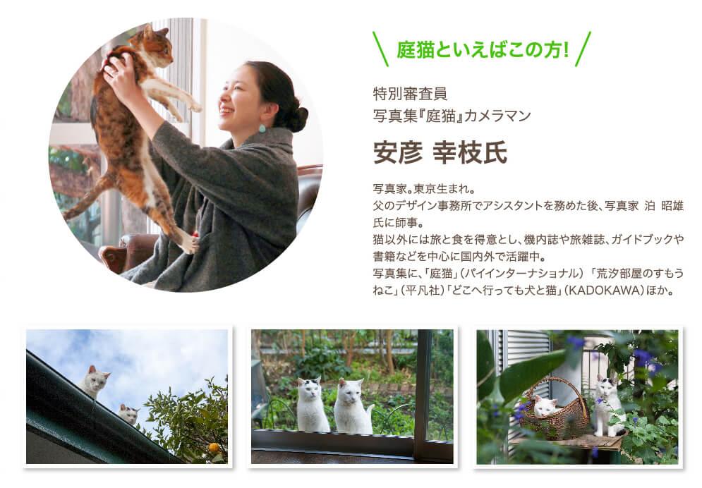 写真集「庭猫」のカメラマン、安彦幸枝(あびこ さちえ)さん