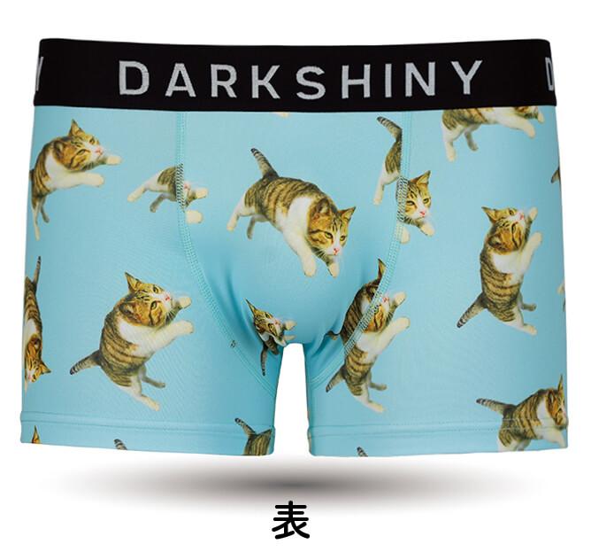 DARKSHINY×飛び猫のボクサーパンツ「スカイブルー」(前面)