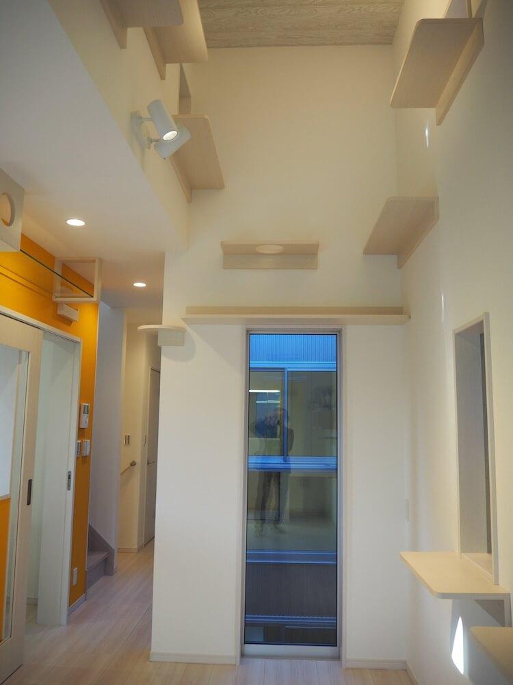 壁には猫が3階まで登れるキャットステップ付き by 猫共生型分譲住宅の第2弾「ichineko 芝塚原」