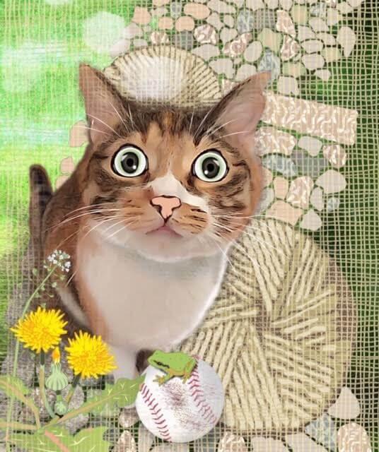 猫の絵作品「キミを知ってるよ」 by 勝間としを