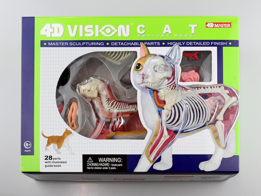 立体パズル 猫の解剖モデル「茶トラ白バージョン」製品パッケージ by 4D VISION