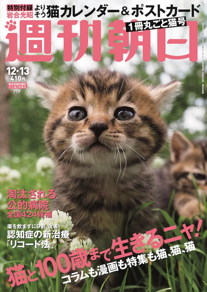 雑誌「週刊朝日2019年12/13号」の表紙 岩合光昭の猫カレンダー「よりそう 2020」付録付き