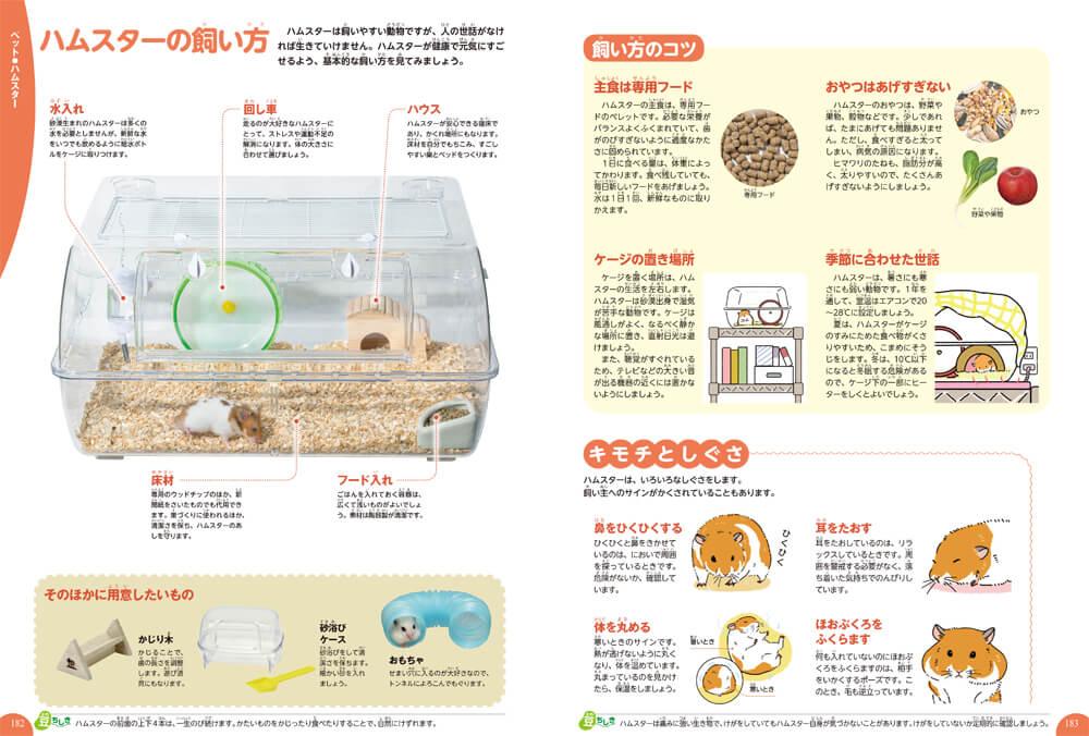 ハムスターの飼い方解説ページ by 学研の図鑑LIVE イヌ・ネコ・ペット