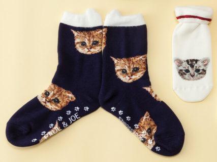 猫柄の靴下が可愛すぎるニャ〜♪ ポール&ジョーの新作あったか小物&財布コレクションが登場