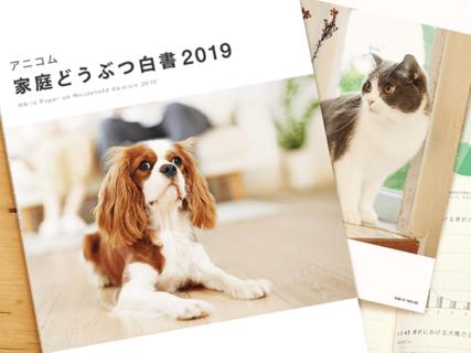 猫の手術理由1位は歯周病ニャ…!世界最大規模のペット統計データ集「家庭どうぶつ白書2019」が公開