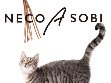 3通りの方法で猫さんの欲求を満たすニャ!新感覚の猫用おもちゃ「ねこじゃらすり」