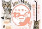 年末年始は世界中の珍しい猫で癒やされる「ふれあいねこ展」仙台と山口で1月まで開催中