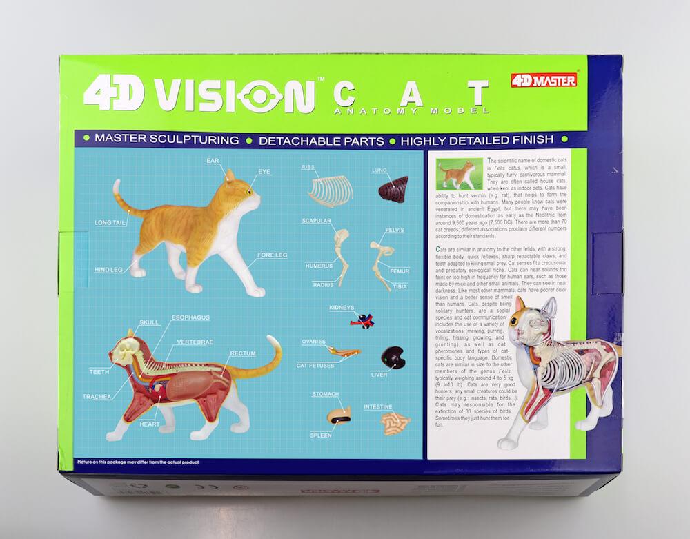 立体パズル 猫の解剖モデル「茶トラ白バージョン」パッケージ背面 by 4D VISION