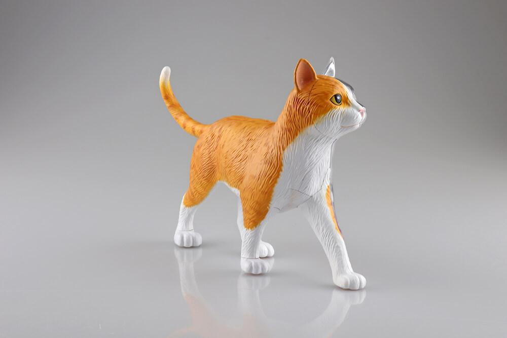 立体パズル 猫の解剖モデル「茶トラ白バージョン」斜め前前方イメージ(猫の外見) by 4D VISION