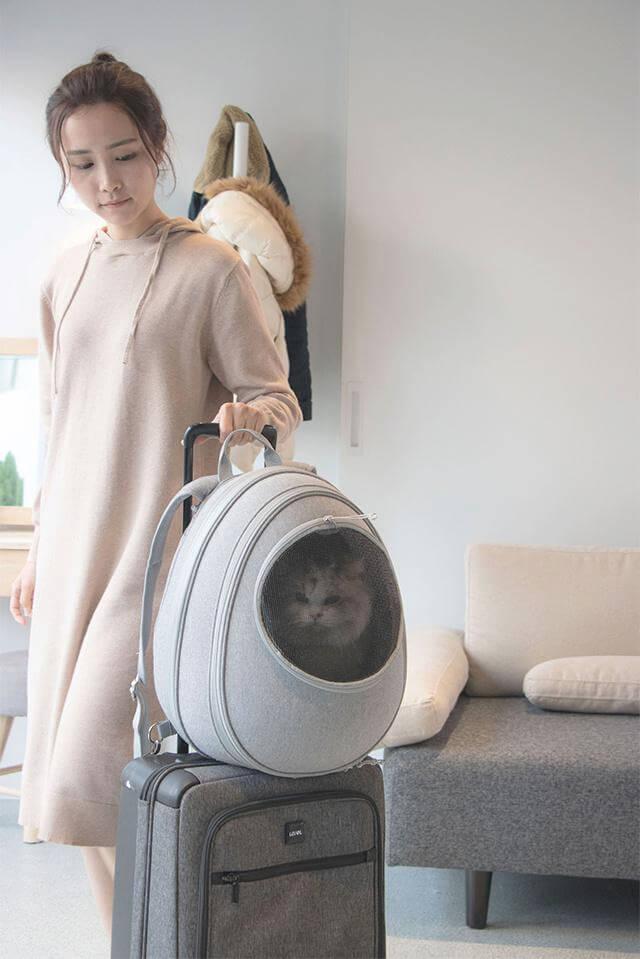 スーツケースの上にリュック型の猫ハウス「EGGY」を乗せたイメージ