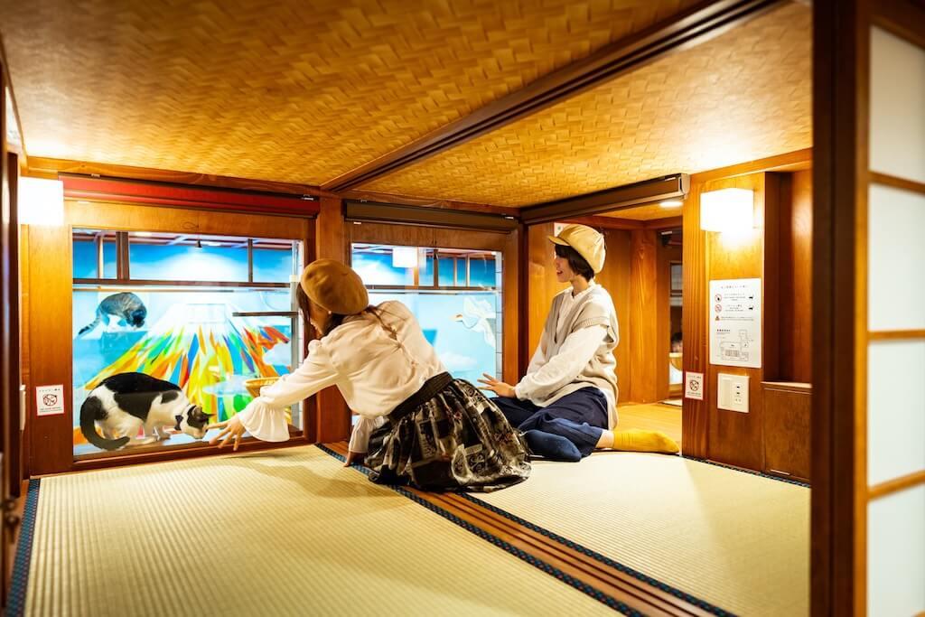 猫が見れるホテル「ねこ旅籠(ねこはたご)」の2人用部屋の室内イメージ