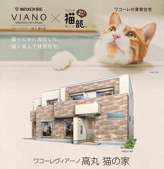 フェリシモ猫部×和田興産×一級建築士で共同開発した「ワコーレヴィアーノ高丸 猫の家」メインビジュアル