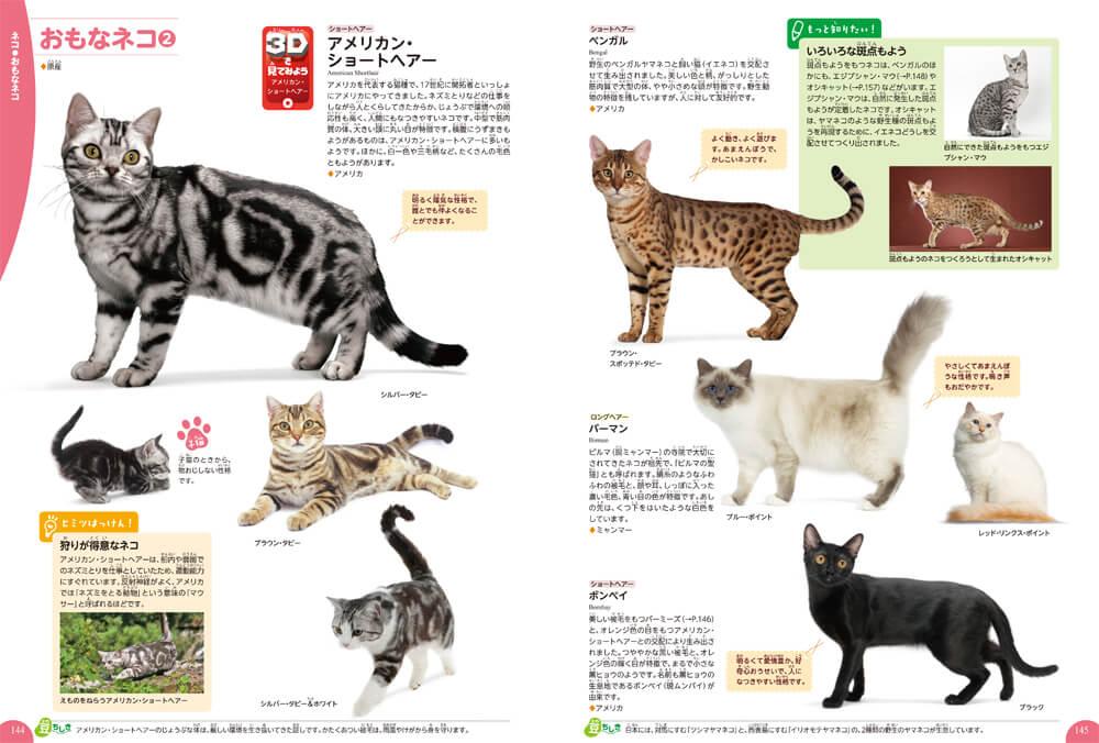 猫の図鑑ページ by 学研の図鑑LIVE イヌ・ネコ・ペット