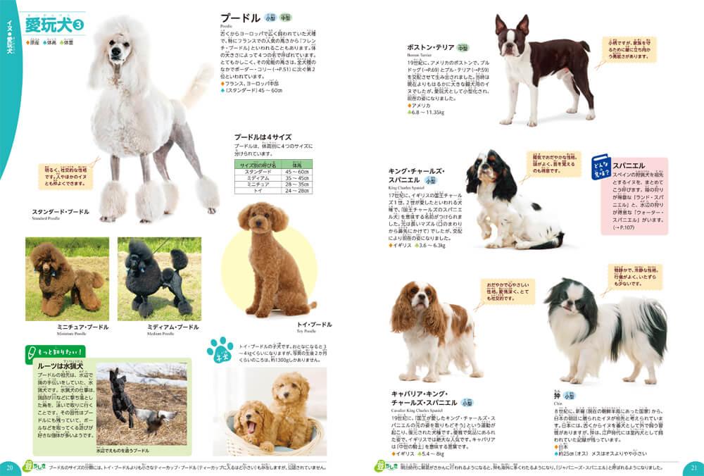 犬の図鑑ページ by 学研の図鑑LIVE イヌ・ネコ・ペット
