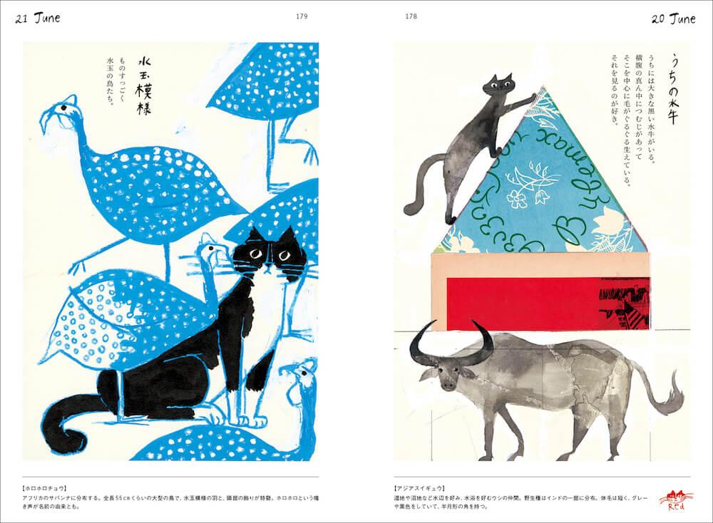 「ホロホロチョウ&アジアスイギュウ」のページ by トラネコボンボンの365日 猫と世界どうぶつ記