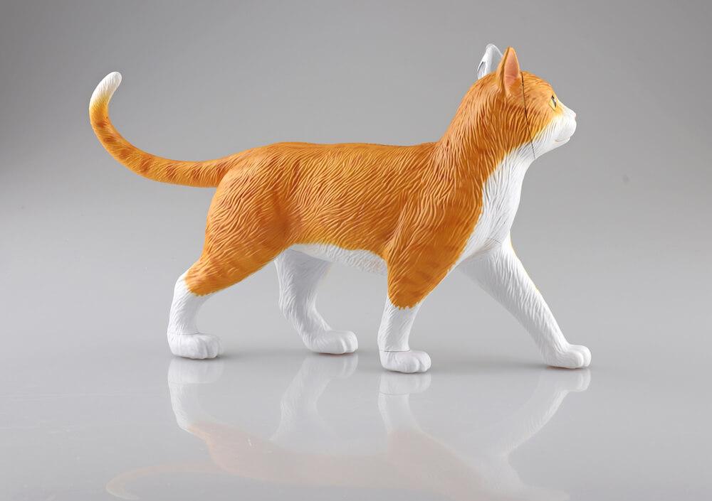 立体パズル 猫の解剖モデル「茶トラ白バージョン」の側面イメージ(猫の外見) by 4D VISION