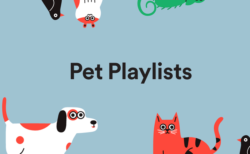 Spotifyが愛猫にぴったりな音楽をチョイス!ペット向けのプレイリストを配信開始