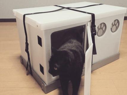 これ一台で猫トイレと居住空間を確保!愛猫との同行避難に備えるケージ「いっしょに避にゃん」