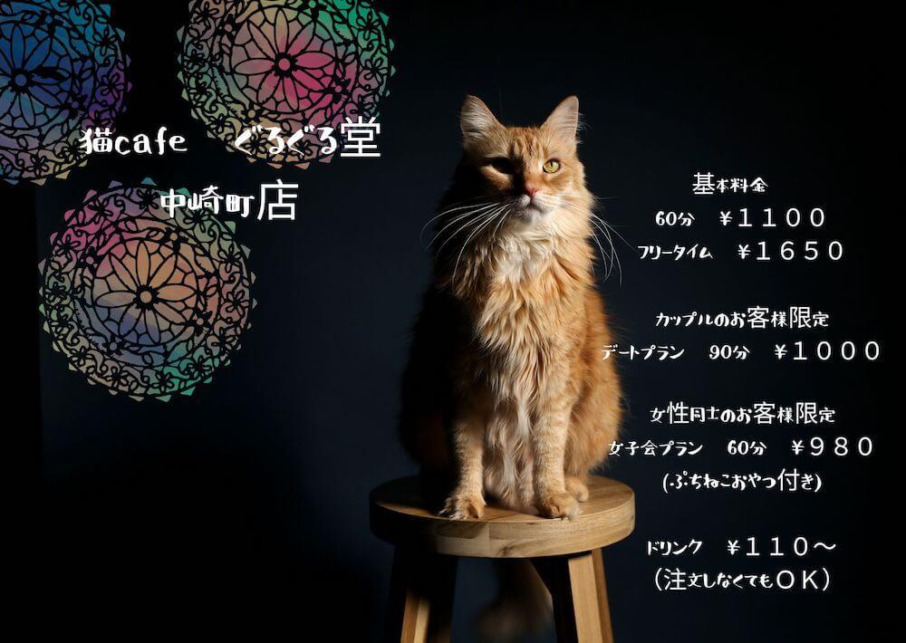 大阪にある猫カフェ「猫cafe ぐるぐる堂 中崎町店」のメインビジュアル
