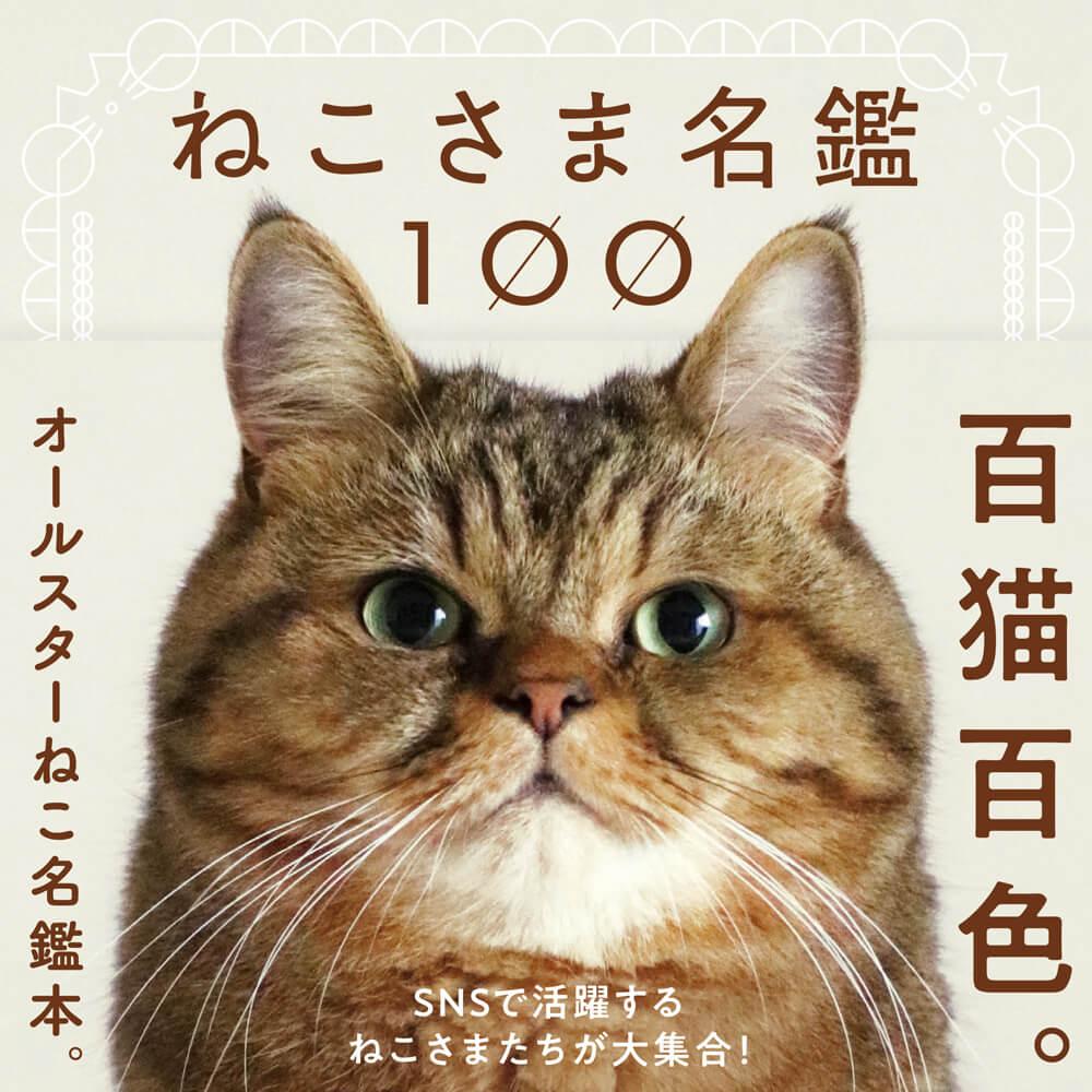SNSを中心に活躍している100匹の猫の写真とプロフィールを収録した写真集「ねこさま名鑑100」