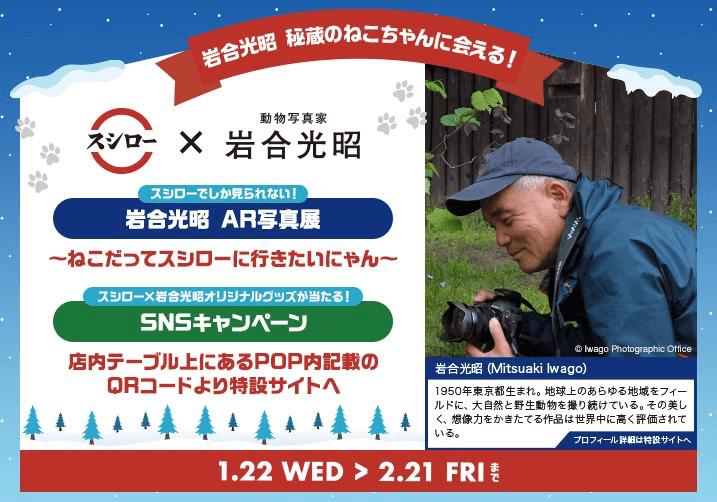 スシローと岩合光昭さんのコラボキャンペーンのメインビジュアル