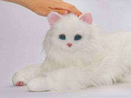 鳴いたりしっぽも振れる!100通りの感情表現ができる猫型ロボット「あまえんぼうねこちゃん」