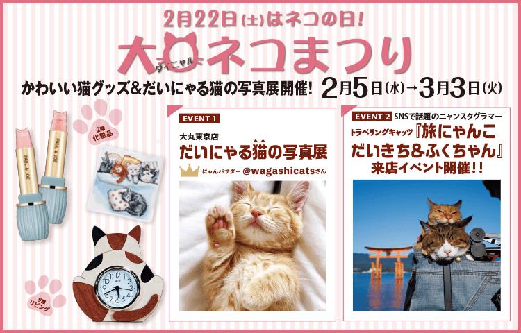 大丸東京店の猫イベント「だいまる猫まつり」のメインビジュアル