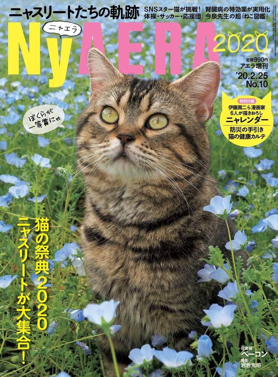 猫雑誌「NyAERA(ニャエラ)2020」の表紙と猫のベーコン