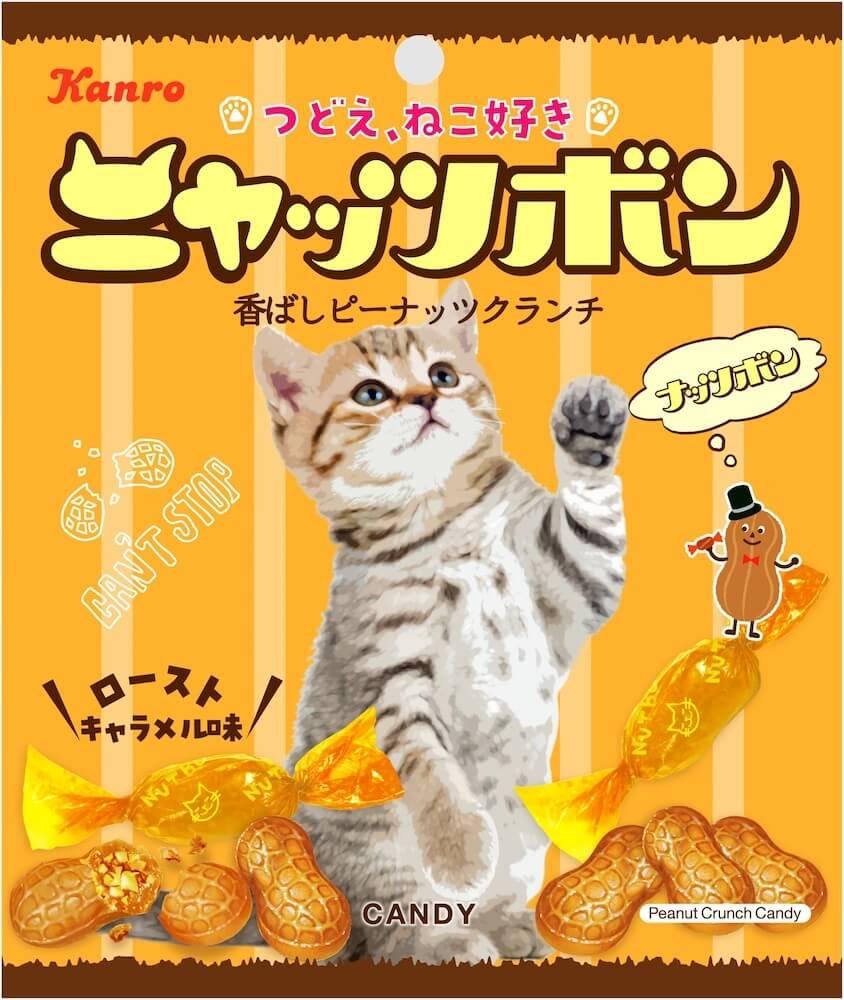 立って手を伸ばす猫がデザインされた「ニャッツボン」の製品パッケージデザイン by カンロ