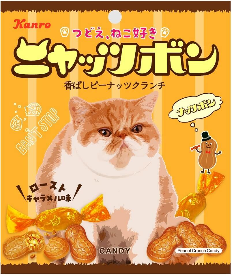 エキゾチックショートヘアのような猫がデザインされた「ニャッツボン」の製品パッケージデザイン by カンロ