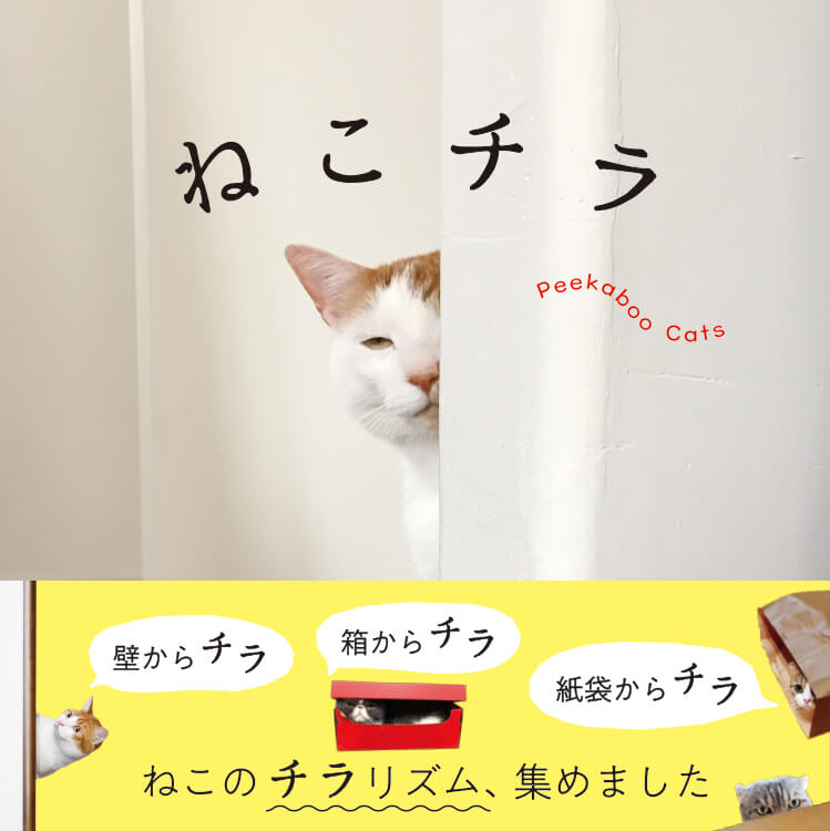 チラ見している猫ばかりを集めた写真集「ねこチラ」の表紙