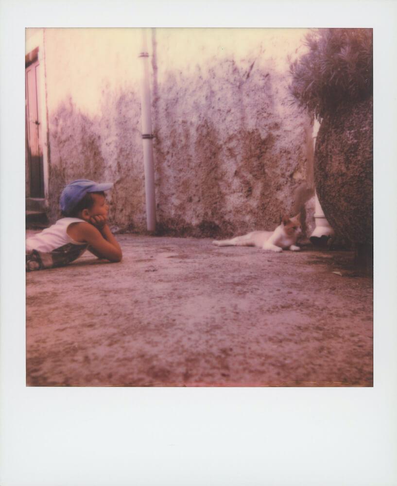 ポラロイドカメラで撮影した「横たわる猫を肘をついて眺める少年」の写真 by 猫守よしお
