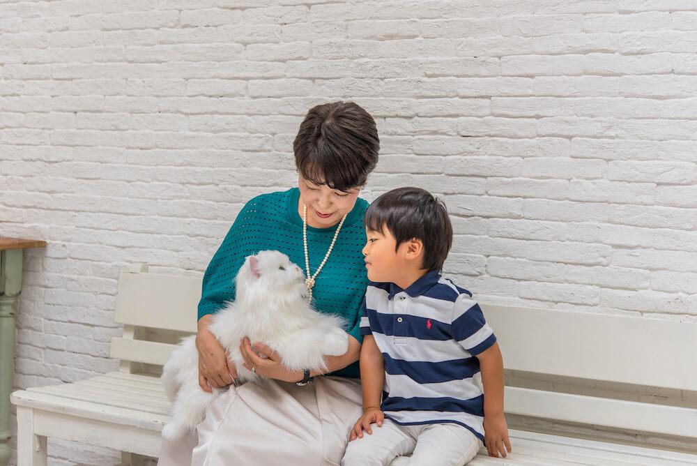 家族の一員として猫型ペットロボット「しっぽふりふり あまえんぼうねこちゃん」を可愛がる様子