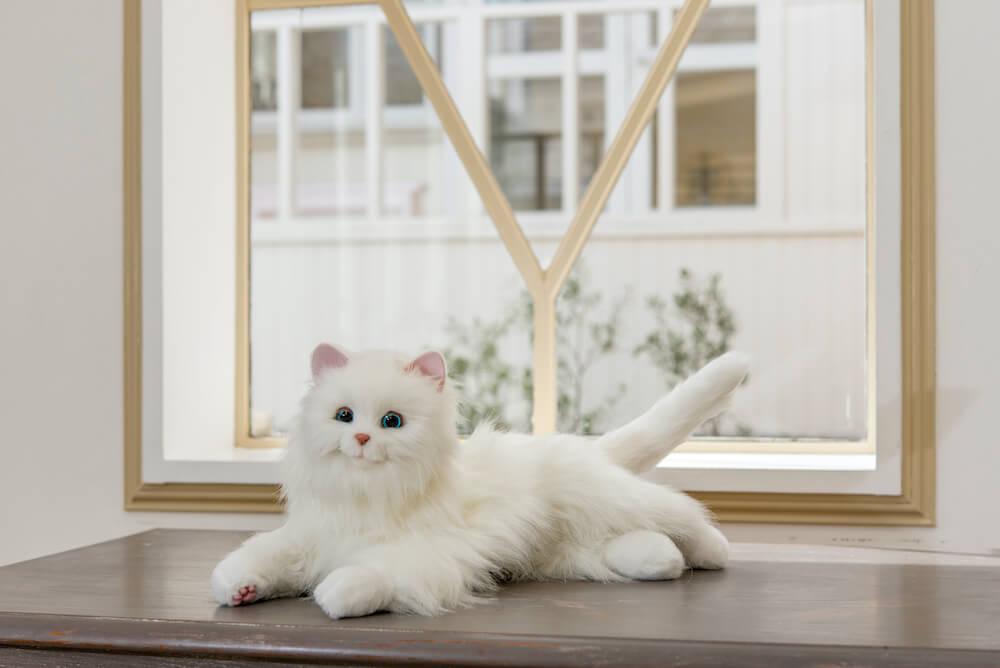 登録した名前に反応する猫型ペットロボット「しっぽふりふり あまえんぼうねこちゃん」