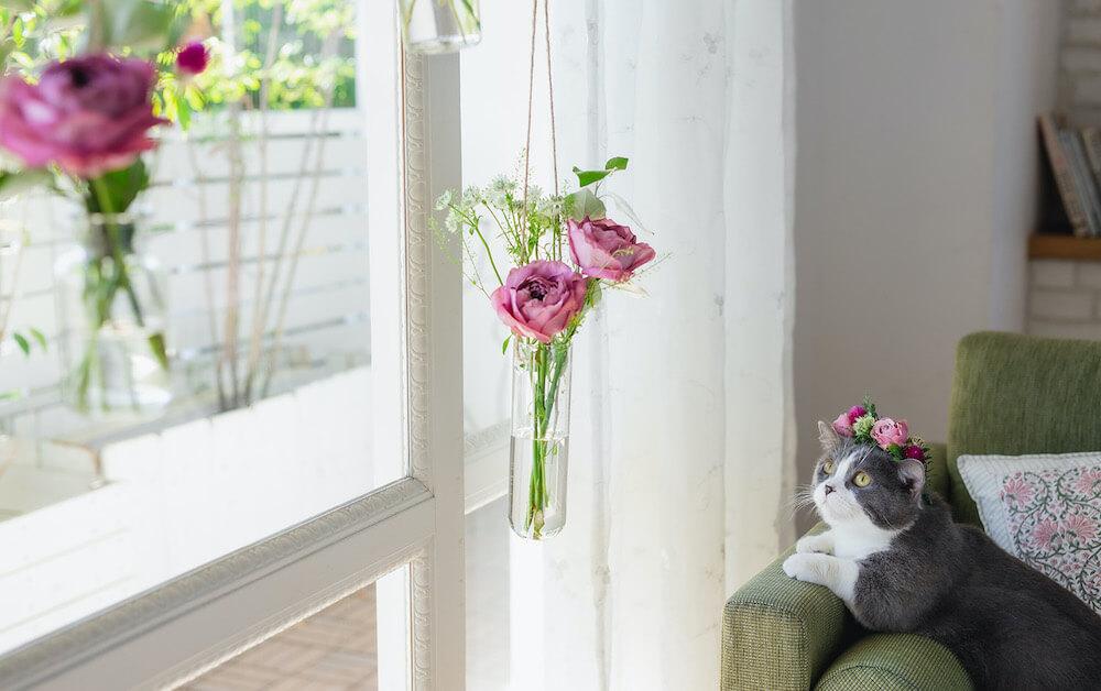 猫の手が届かないように花を吊るす飾り方を提案する日比谷花壇